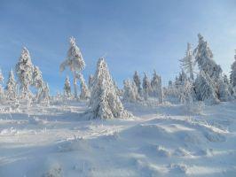 skiurlaub erzgebirge oberwiesenthal